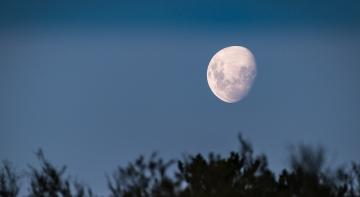 Новини з Місяця