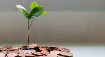 Як батьки впливають на багатство дітей?