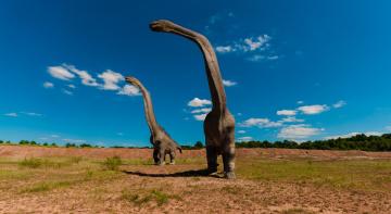 Як динозаври займалися сексом?